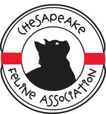Chesapeake Feline Association (CFA)
